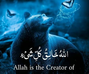 aesthetic, allah, and bear image