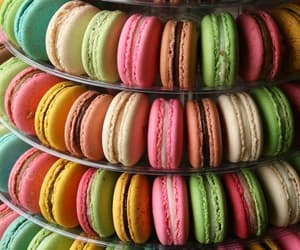 ‎macarons, colorful, and colors image