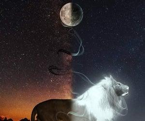 yin-yang and lunas image