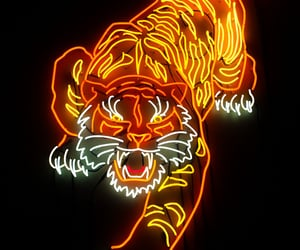 tatto and tiger image