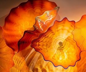 art, scalloped, and chihuly image