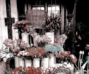 flowers theme, kpop themes, and taeyong themes image