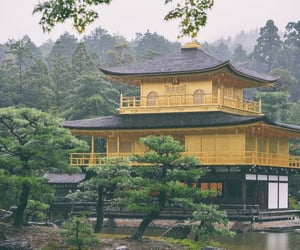 adventure, golden temple, and japan image