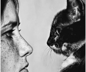 cat, black and white, and freckles image