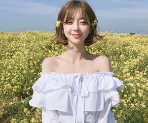 aesthetic, korea, and cute image