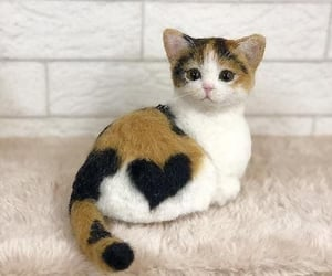 cat, heart, and cute image