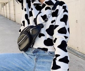 carefree, cow, and fashion image