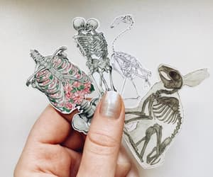 anatomy, biology, and etsy image
