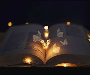 book, butterfly, and light image