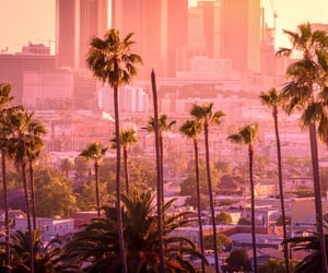 aesthetic, california, and summer image