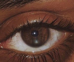 brown, beauty, and eye image