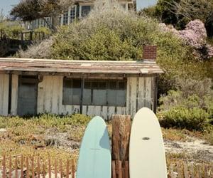 beach, pogues, and netflix image