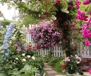 gif and gifs gardens image