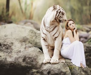 tiger and woman image