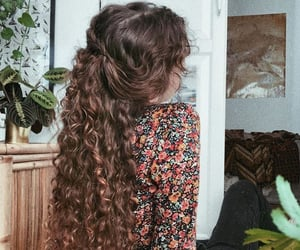 curly, long hair, and hair image