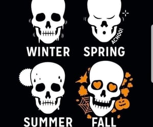 skull, aesthetic, and fall image