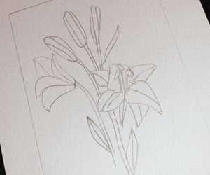 art, flower, and kunst image