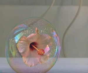 flowers, bubbles, and aesthetic image