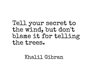 blame, wind, and secrets image