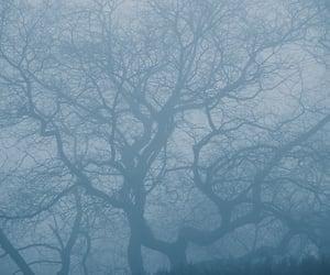 artphoto, foggy, and mist image