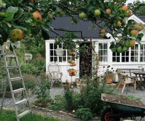 garden, fruit, and cottage image