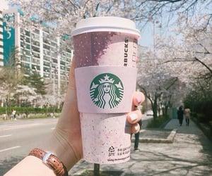 starbucks, coffee, and food image