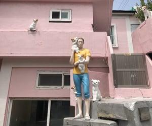 dog, korea, and pink image