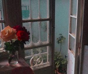 aesthetic, Algeria, and flowers image