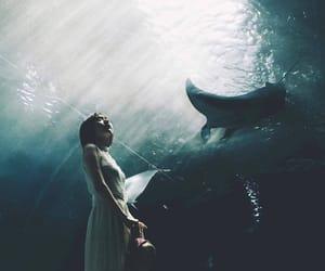 girl, light, and instagram image