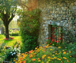 cottage and garden image