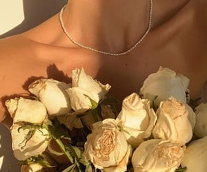 aesthetic, rose, and beige image