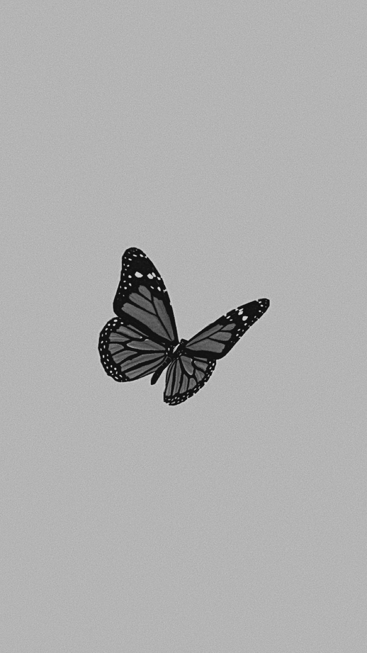 84 Images About Butterfly Wp Collection On We Heart It See More About Butterfly Wallpaper And Aesthetic