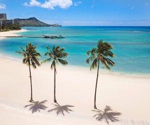 beach, hawaii, and luxury image