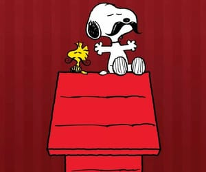 beagle, dog, and peanuts image