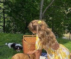 dog, nature, and picnic image