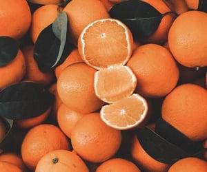 aesthetic, orange, and fruit image
