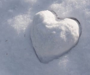 aesthetic, frost, and heart image