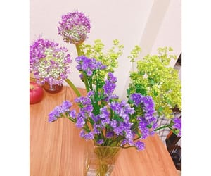 flower, yuri_nakamura, and instagram image