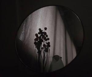 dark, flowers, and mirror image