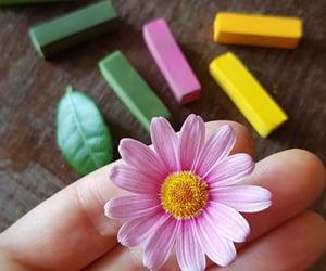 belleza, inspiracion, and colores image
