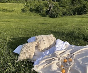 aesthetic, nature, and picnic image