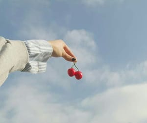 cherry, aesthetic, and sky image