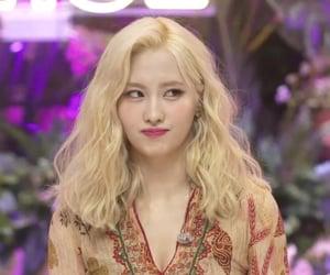 JYP, live, and screenshot image