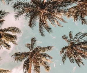 summer, wallpaper, and beach image