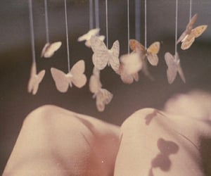 butterfly, pink, and vintage image