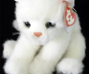 cute cat, white, and crystal the cat image