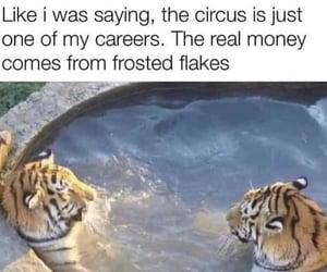 funny image