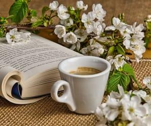 book, coffee, and coffee break image