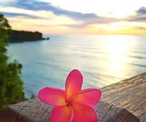 beach, ocean, and Sunny image