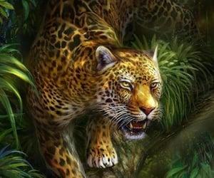 leopardo and feroz image